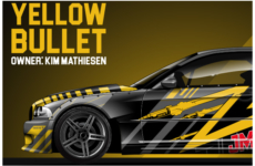 YELLOW BULLET – Kim Mathiesen